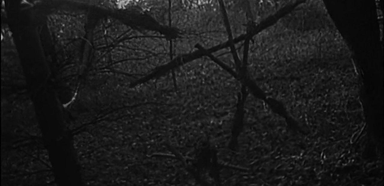 ведьма из блэр 1999