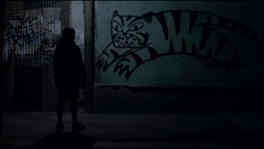 тигры не боятся 2017
