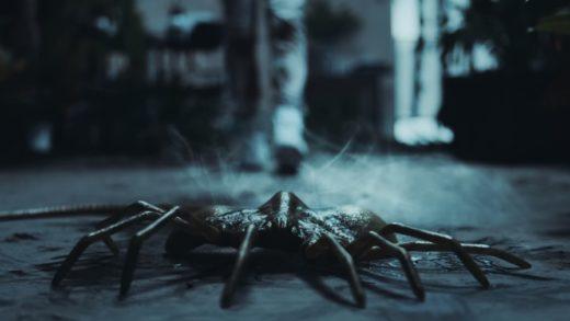 Доберман бьется с лицехватом в короткометражке «Чужой: Образец»
