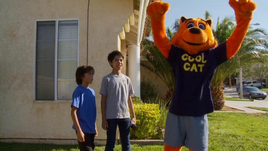 клевый кот спасает детей 2018