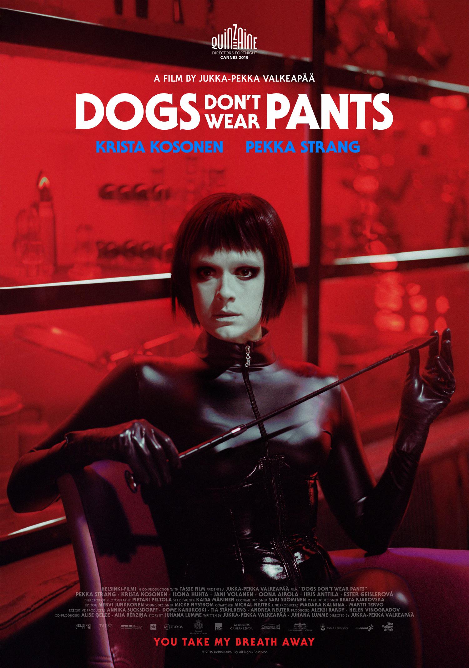 собаки не носят штанов 2019 постер