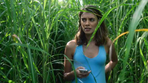Netflix + Винченцо Натали: Трейлер «Высокой зеленой травы» — хоррор-блуждания в чистом поле