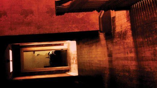 Режиссер «Оленьих рогов» заменит Оза Перкинса на экранизации хоррор-романа Пола Трембли