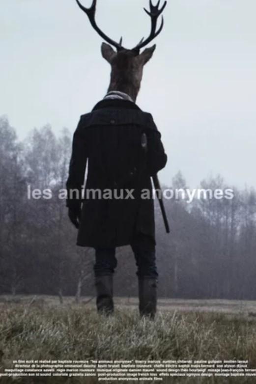 anonymous-animals
